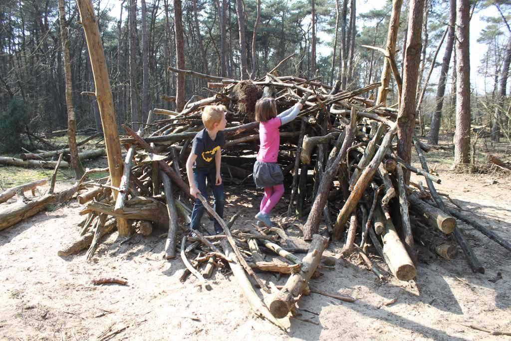Samenwerken aan een grotere hut.