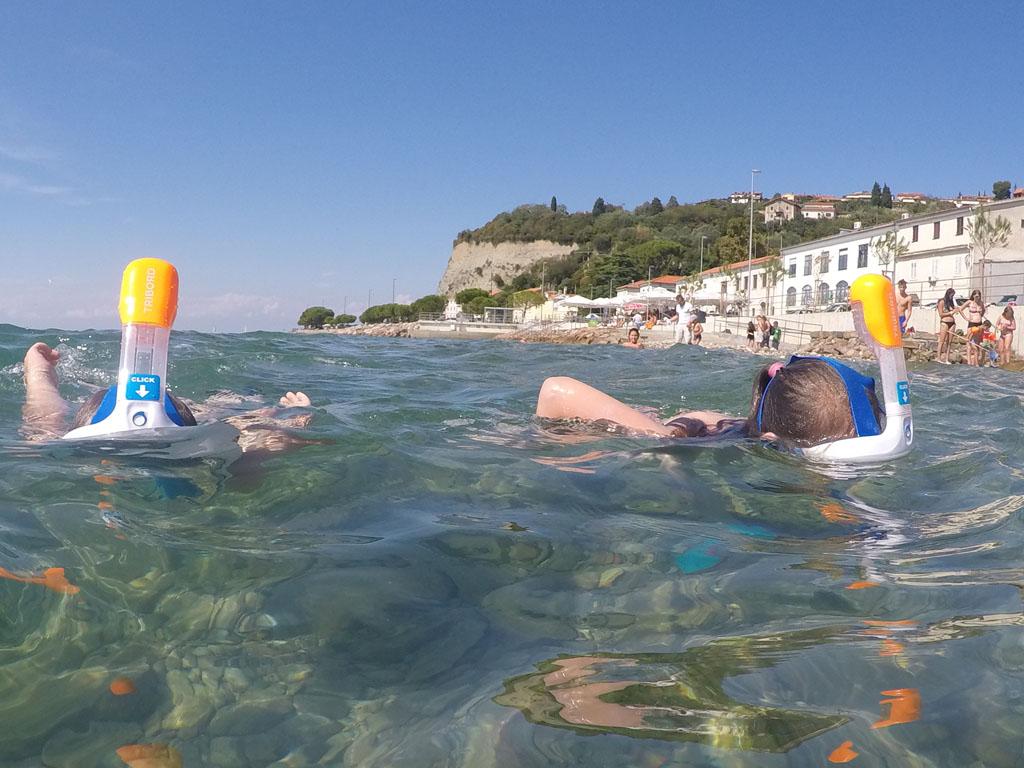 Door het oranje uiteinde van de snorkel zien we ze goed in het water.