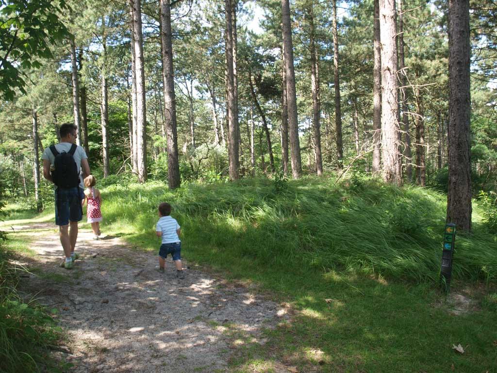De wandeling door Oranjezon gaat grotendeels door het bos.