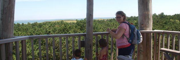 Wandelen in natuurgebied Oranjezon met kinderen (3, 4, 5 en 7 km)