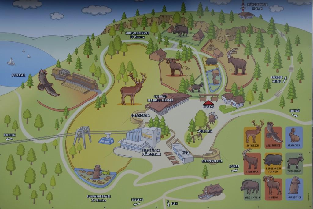 Bovenaan de Pfänderbaan is een leuk dierenpark.