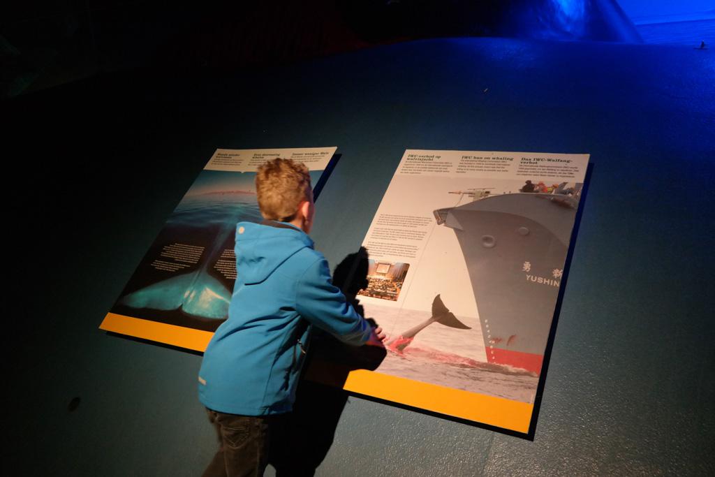 De walvisexpo geeft o.a. informatie over de Walvisjacht.