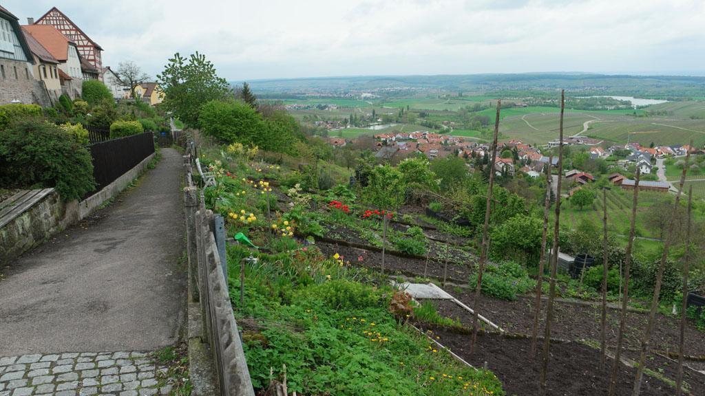 We wandelen langs de rand van het stadje waar van oudsher de tuinen te vinden zijn.