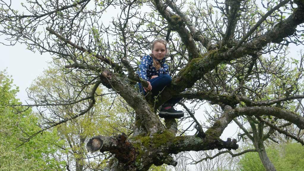 Maureen zit meteen in de boom.