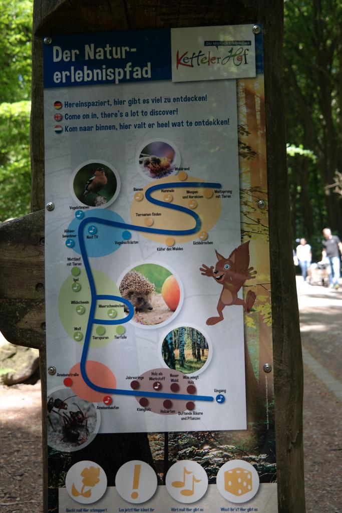Het natuurbelevingspad is een educatieve route in het bos. Met Nederlandstalige teksten.
