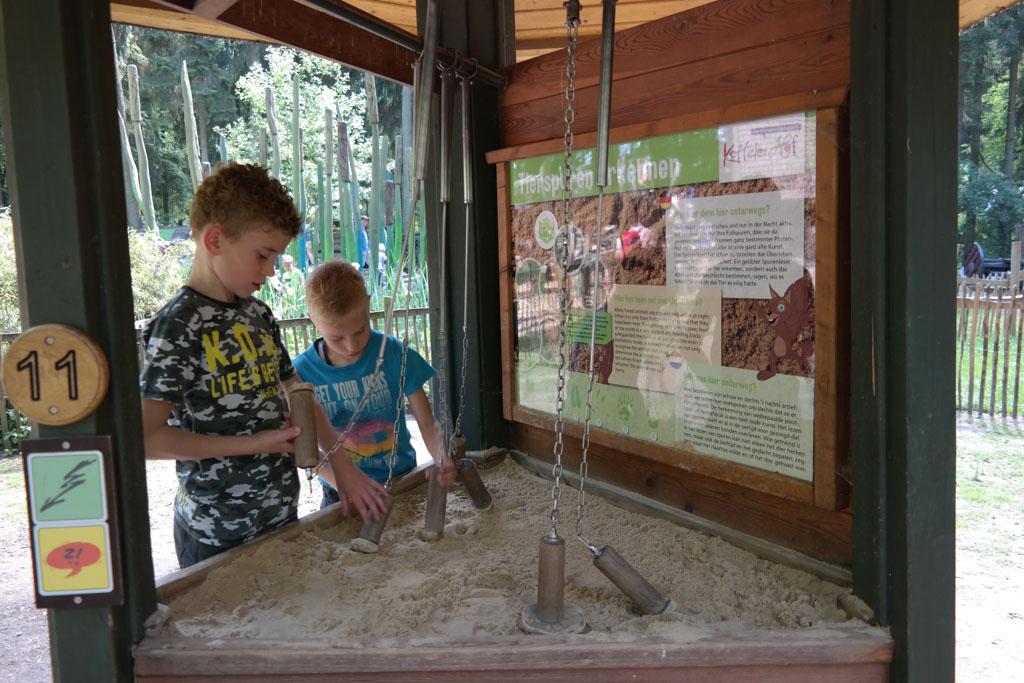 Dierensporen ontdekken bij het natuurbelevingspad.