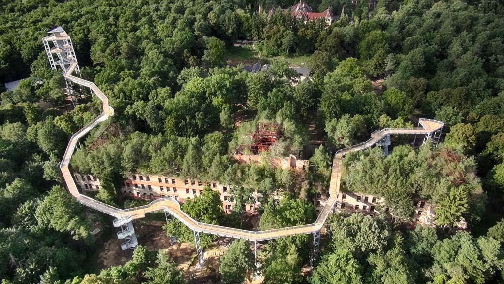 Uniek: een boomkroonpad over een oud sanatorium (© Baum und Zeit).