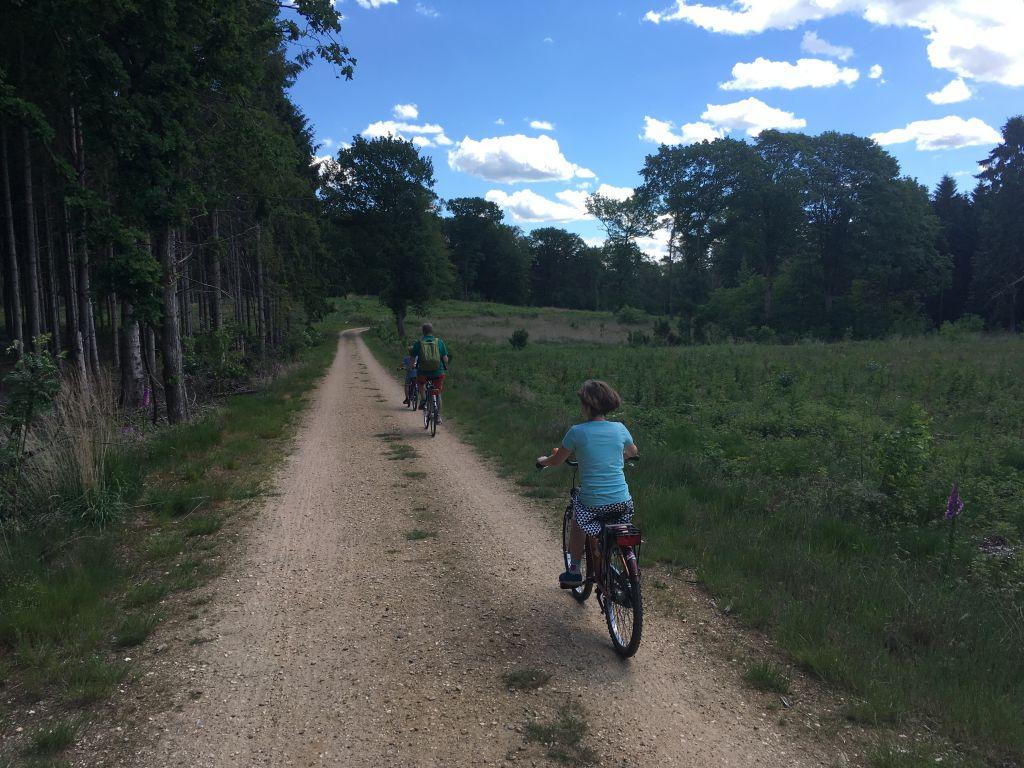Heerlijk fietsen in nationaal Park De Meinweg in Midden Limburg