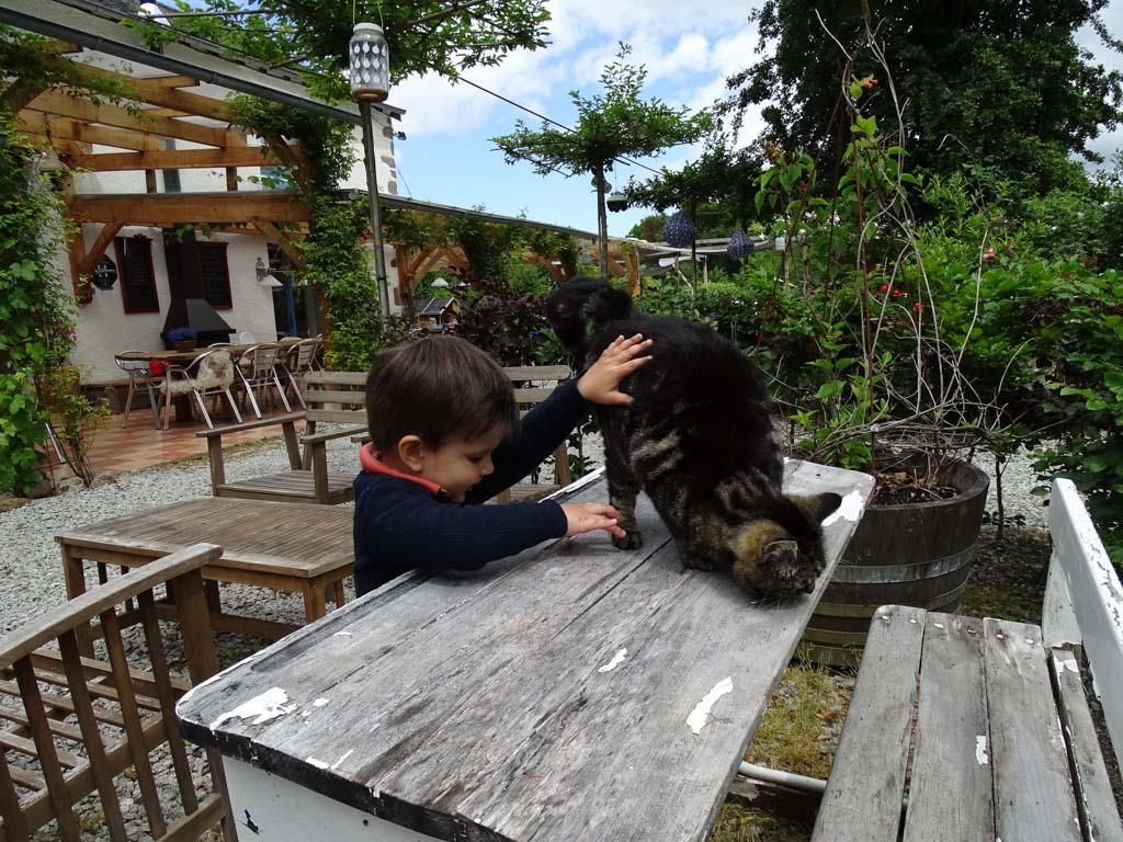 Er zijn zoveel lieve, leuke dieren bij Moulin des Jarasses!