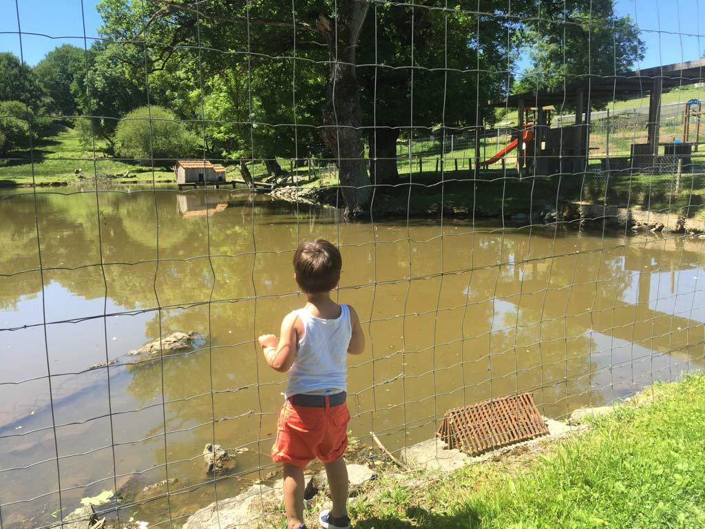 Op een paar kilometer afstand van Moulin des Jarasses ligt een mooi park met dieren en een speeltuin.
