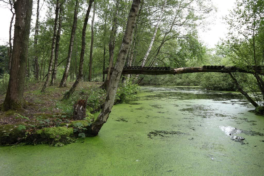 We waterfietsen in natuurgebied De Leemputten ook door dit soort smalle stukjes.