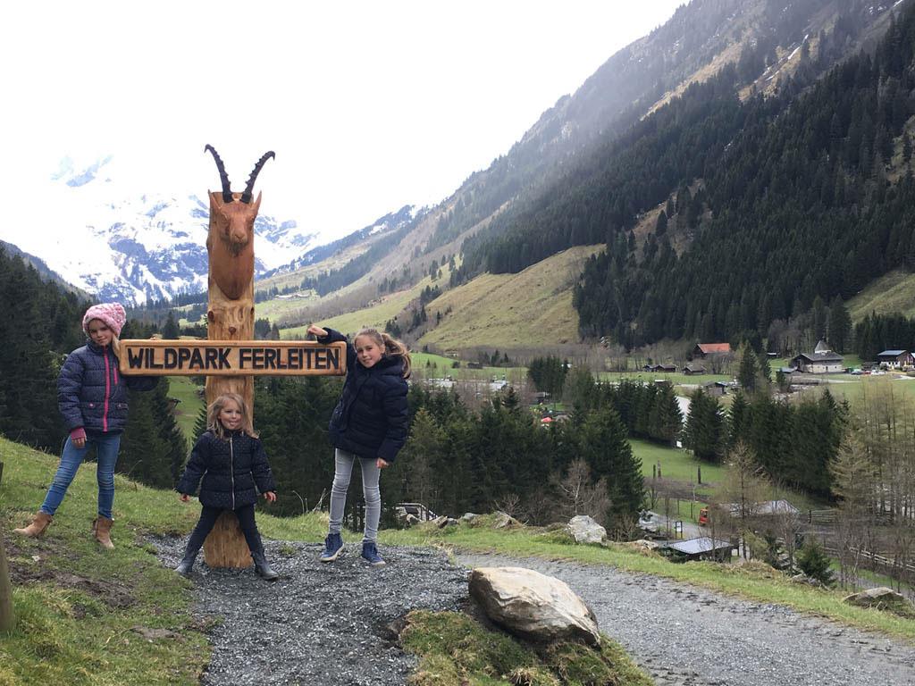 Bovenop de berg, de herten blijven uit onze buurt