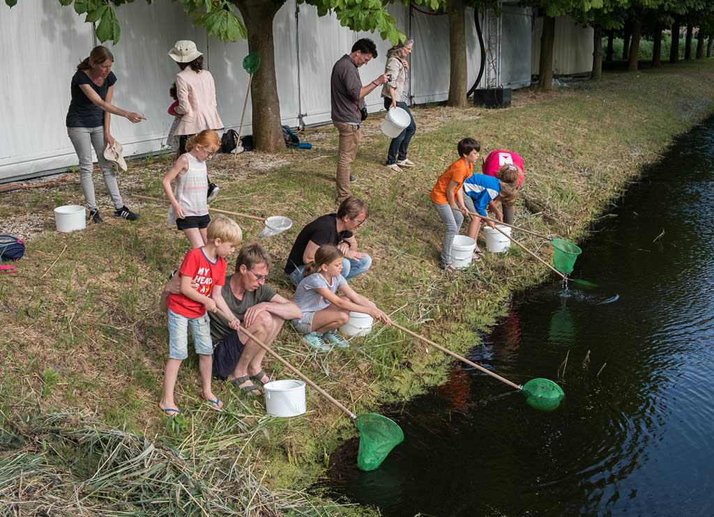 Op slootsafari tijdens het zomerprogramma van Naturalis. Hoeveel diertjes kun je vangen?