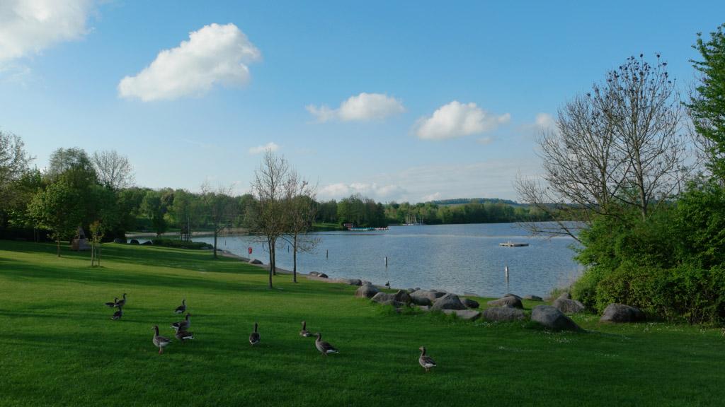 Net buiten de camping is de Breitenauer See te vinden.