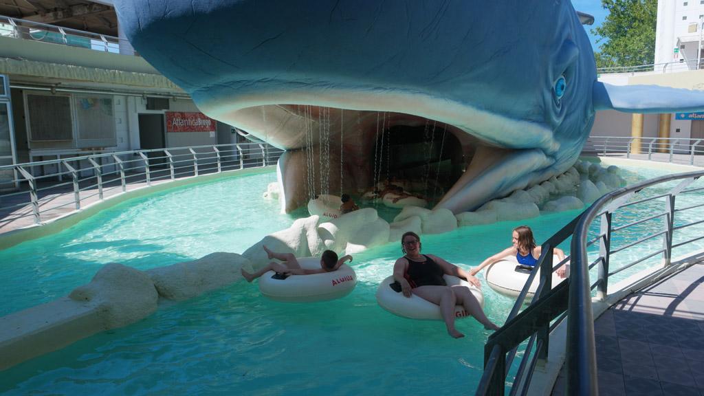 Dobberen bij de walvis.