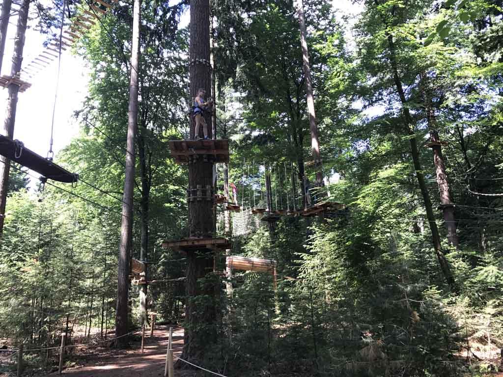 Bij Klimbos Veluwe zijn er veel verschillende routes met diverse soorten hindernissen te klimmen.