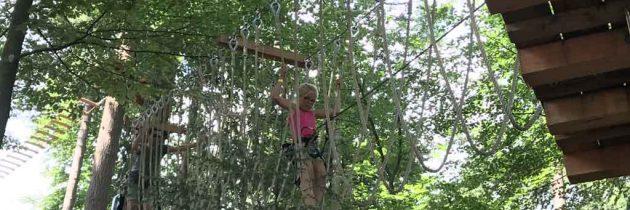 Klimbos Veluwe is één groot avontuur voor kinderen