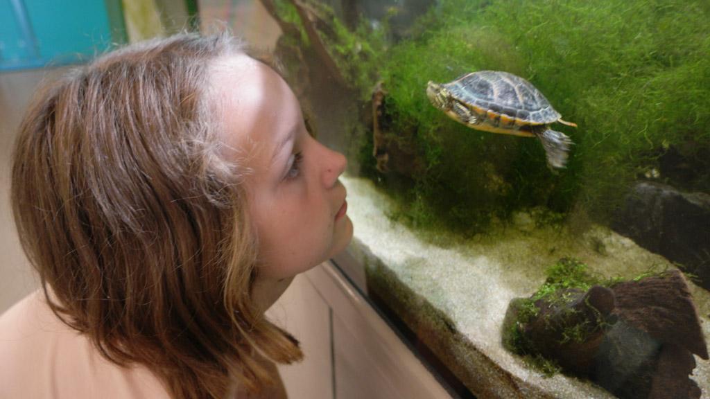 Er zijn zelf wat dieren, die worden goed bestudeerd door Maureen.