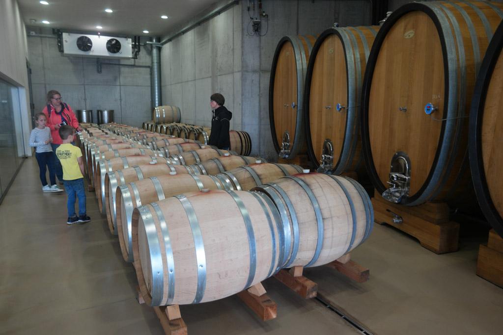 We leren over de verschillen wijnvaten.