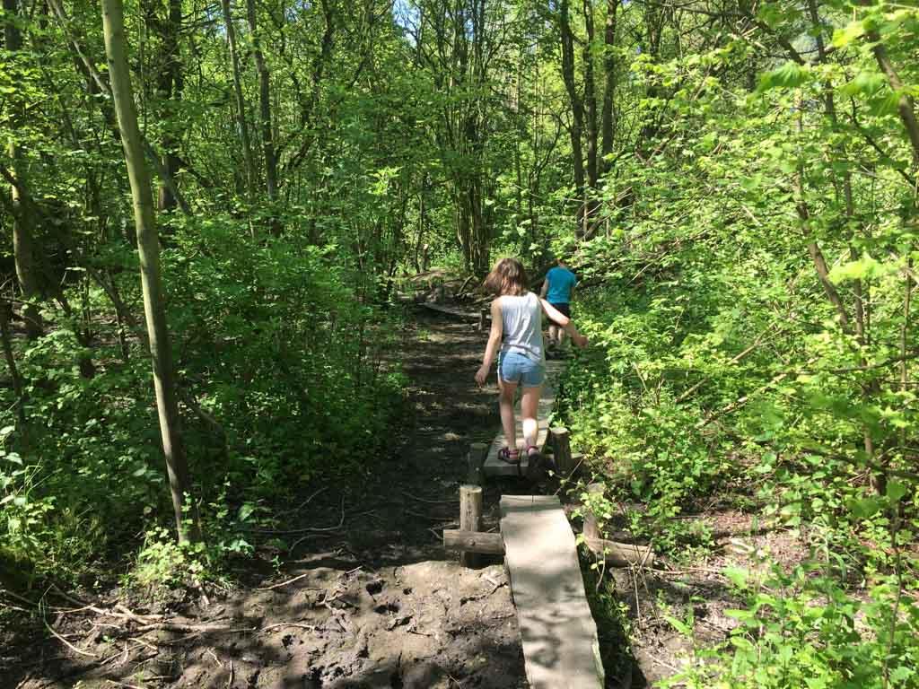 Op plekken waar het heel modderig is lopen we over planken.