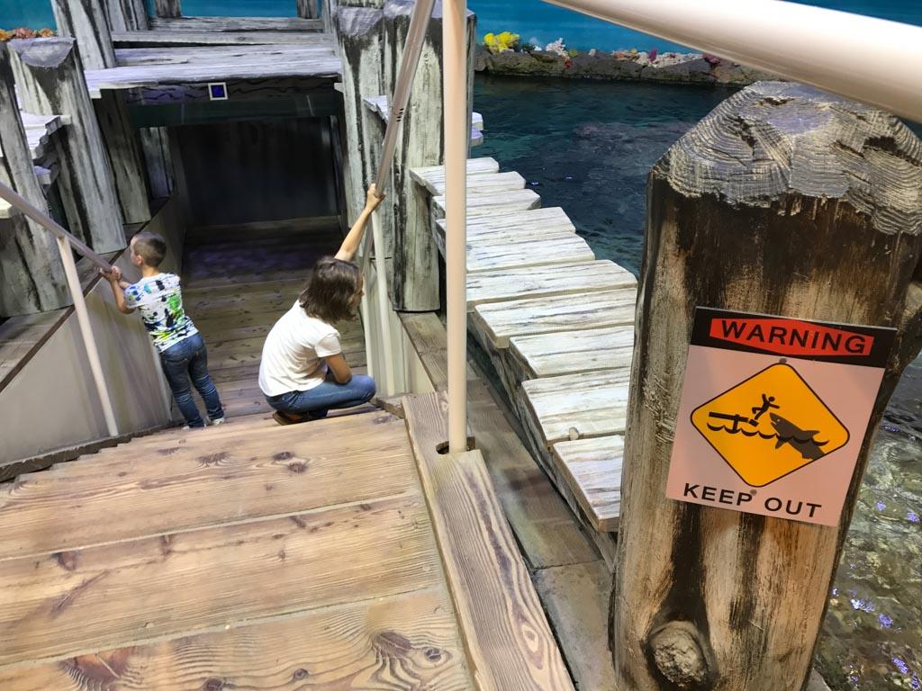 Via deze trap lopen we de zee 'in' en zien we de vissen.