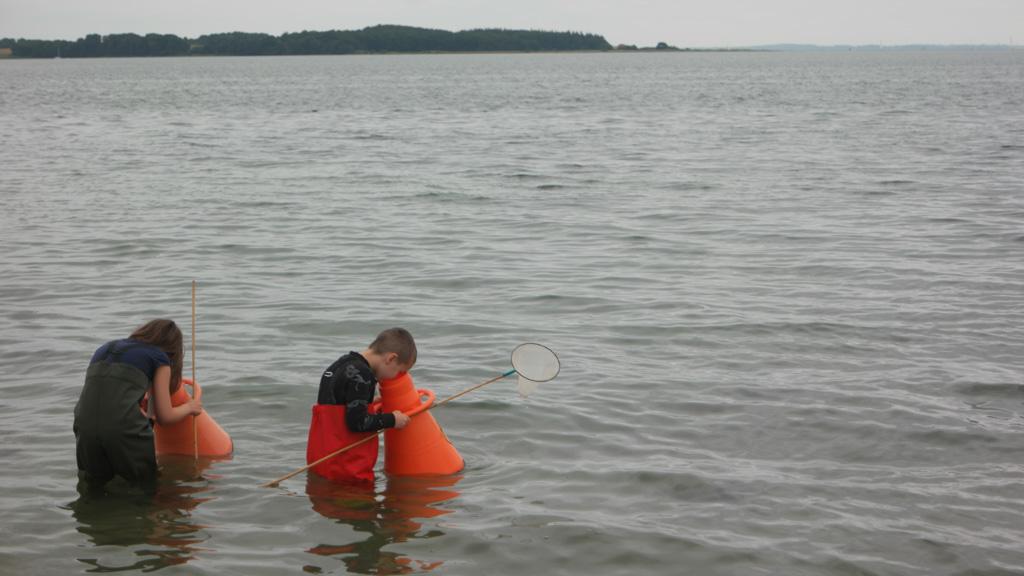 Lopen met de onderwaterkijker door het water.