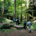 Avontuurlijk wandelen op de Mullerthal Trail met kinderen