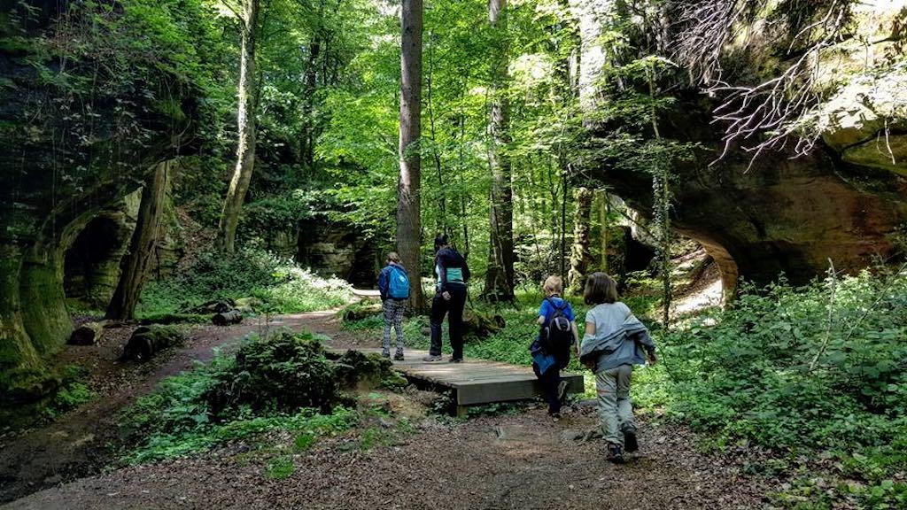 Mullerthal Trail met kinderen foto 14