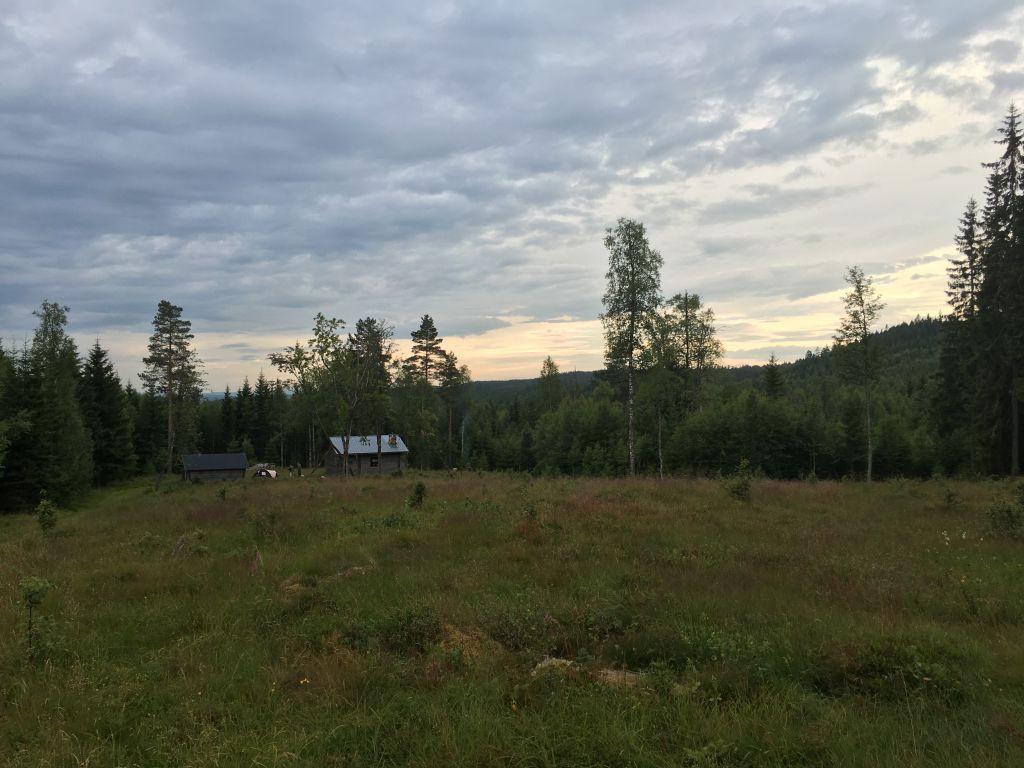 Aangekomen bij de open plek zien we ons huis in de verte liggen. Een magisch mooie plek is dit!