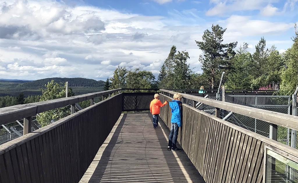 Klimmen over de bruggen omhoog