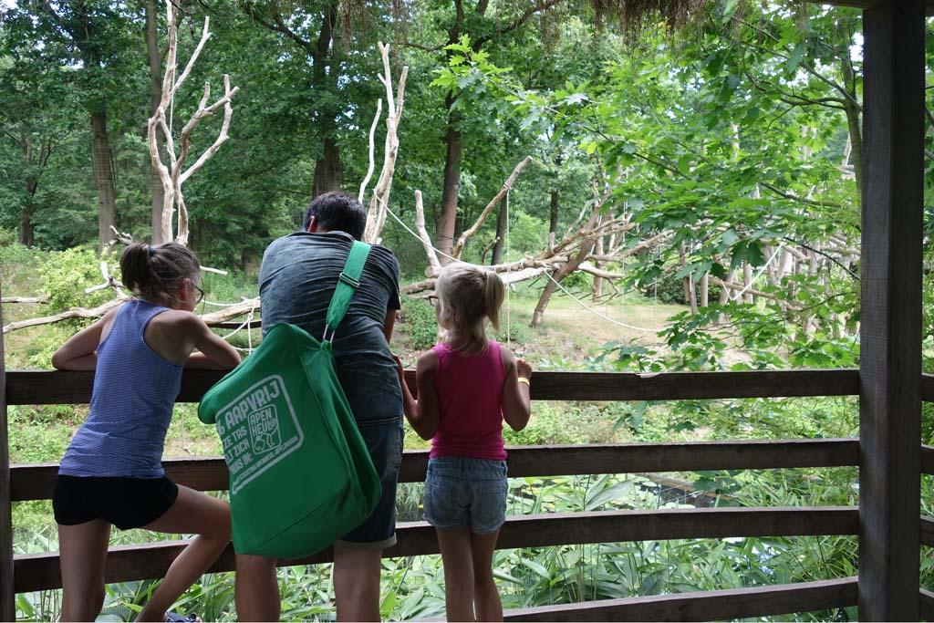 apeldoorn met kinderen apenheul