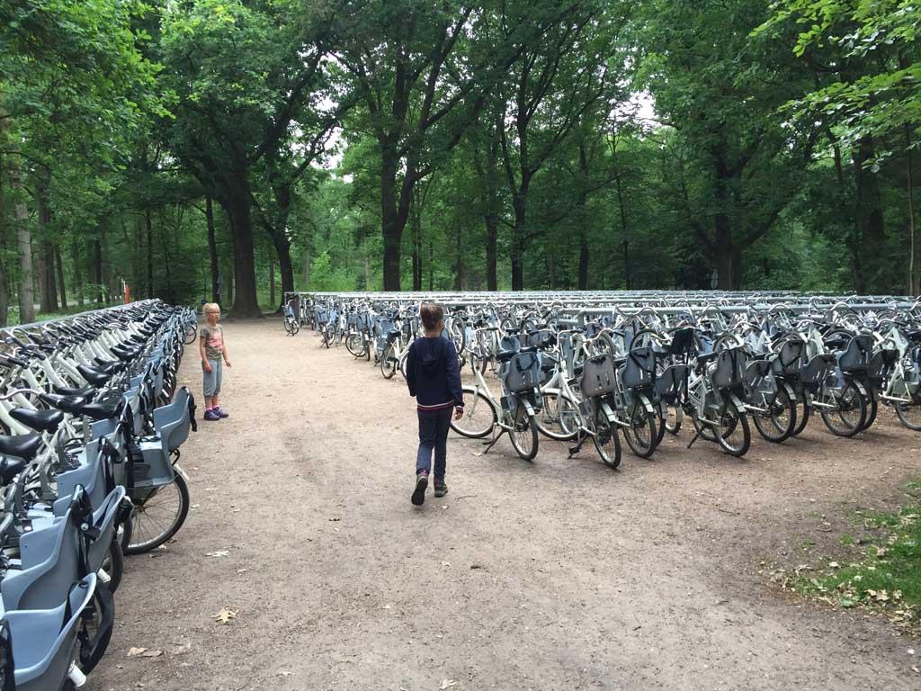 Apeldoorn met kinderen witte fietsen in NP hoge Veluwe