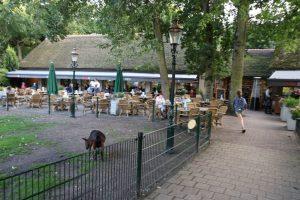 De dierenweide grenst aan het terras, net als de speeltuin.