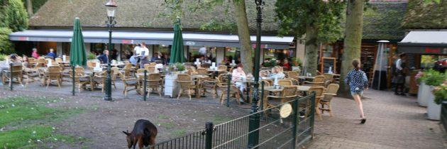 Spelen en lekker eten bij Johanna's Hof in Castricum aan Zee