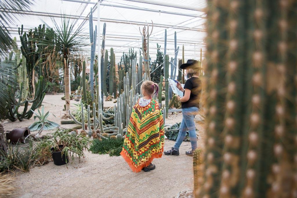 Cactusspeurtocht