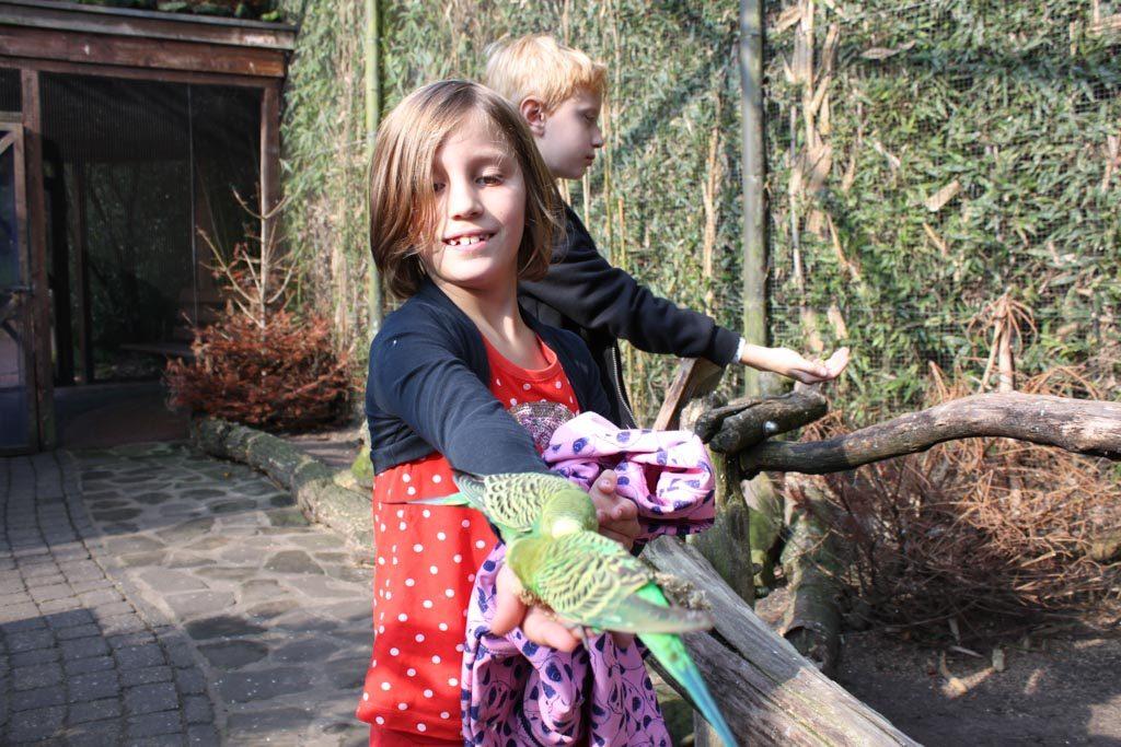 Van een afstandje vindt jongste dochter de vogels wel leuk.