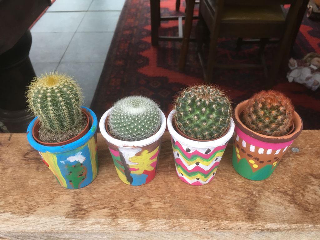 Cactusoase