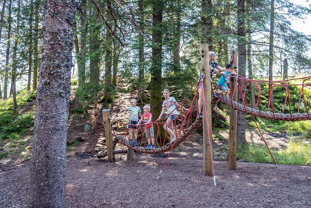Klimmen op een parcours in het bos