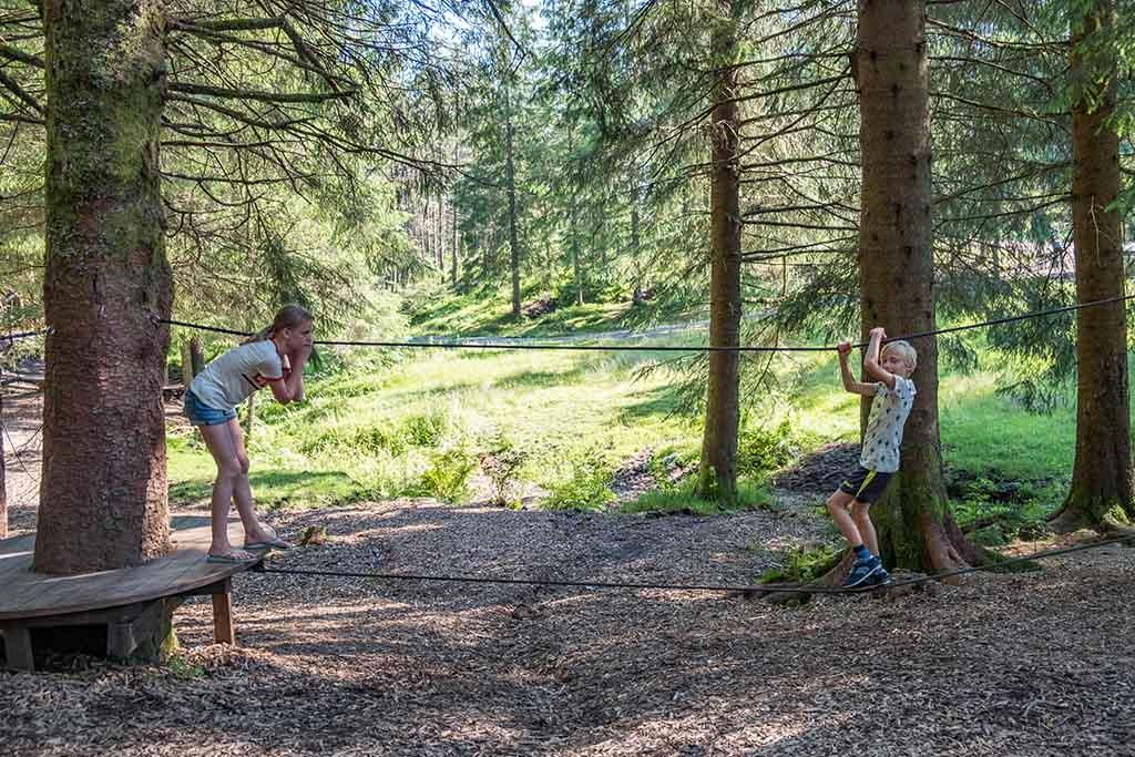 Het grote klimparcours verderop in het bos