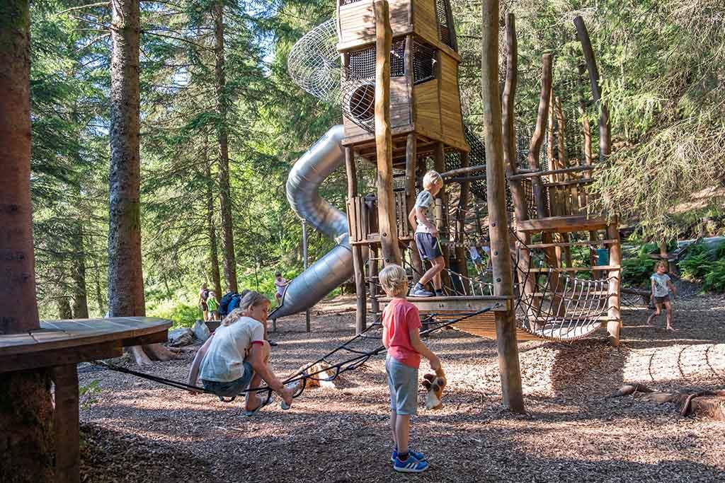 De kids vermaken zich een hele tijd met klimmen