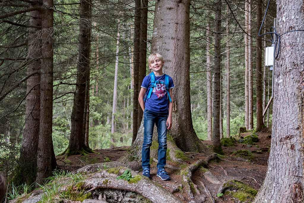 Stokken zoeken in het bos