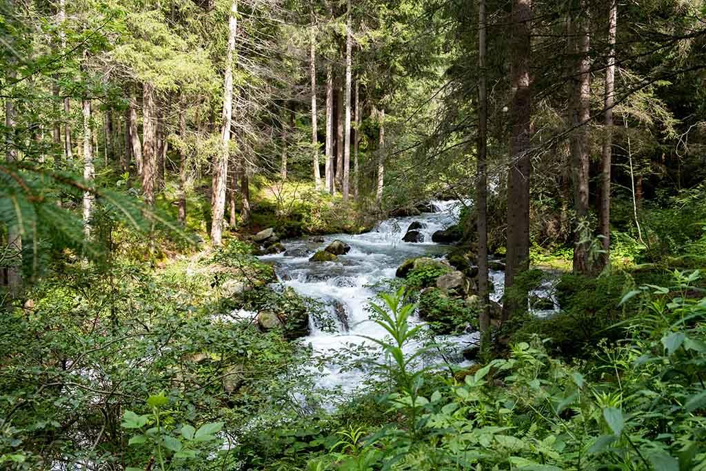 We volgen de rivier stroomopwaarts richting de waterval