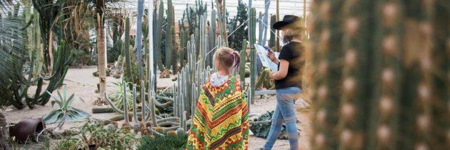 De Cactusoase, een bijzonder belevenispark in de Achterhoek.