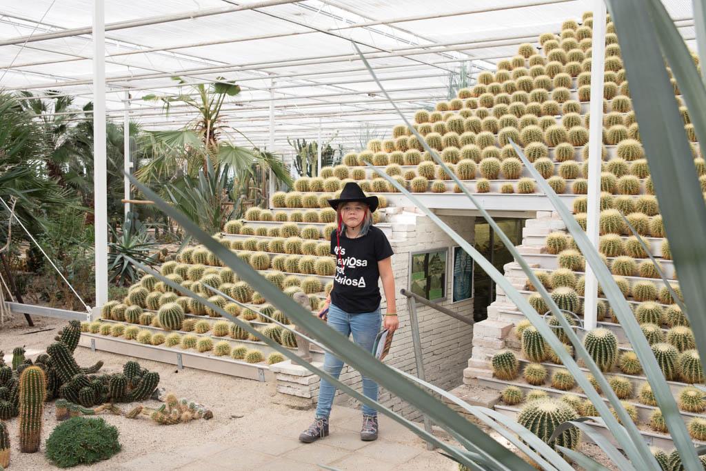 Cactuspiramide