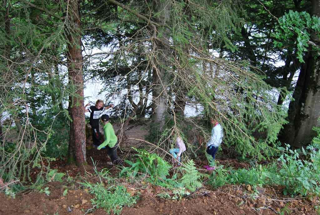 De grote jongens bouwen een 'geheime' hut op een van de hellingen met bos. Jilles wil maar al te graag meedoen, maar daar is hij net te klein voor.