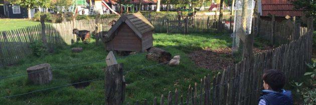 Vakantiepark De Pier: een kindvriendelijk vakantiepark in Uden