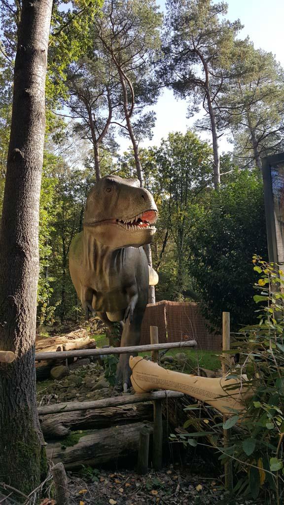 Overal in het Dinobos staan dino's opgesteld, zoals deze stoere T-rex.