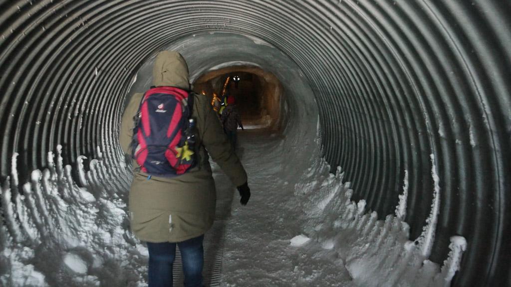 In pinguin-pas de gletsjer in.