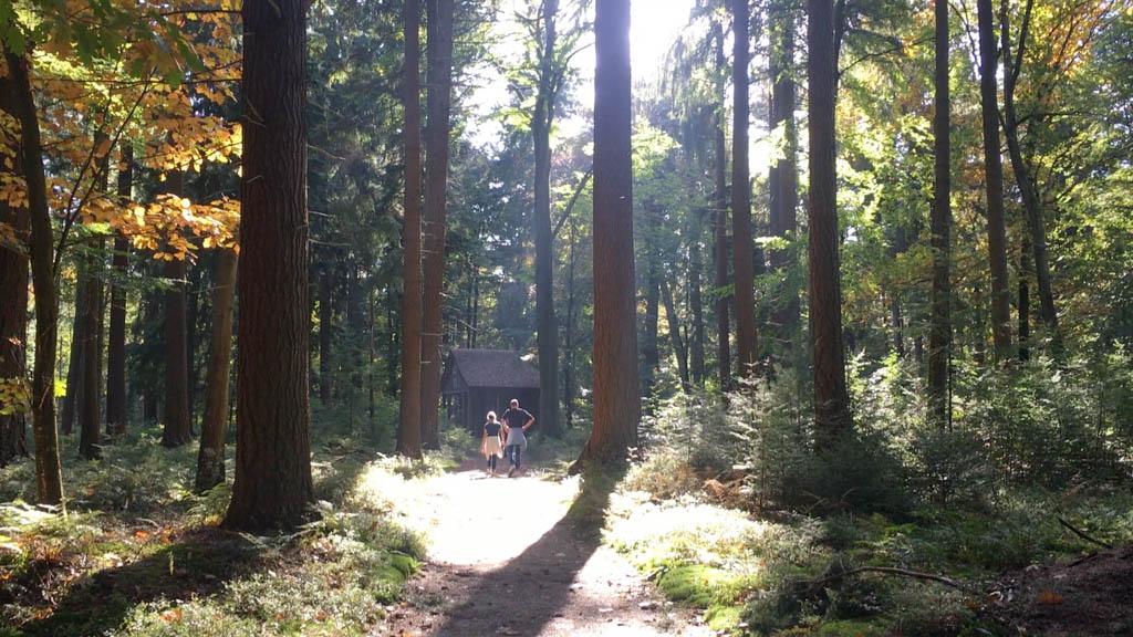 Weer wat ontdekt in het Paleispark. Willemstempel is een soort huisje gemaakt van allemaal kleine boomstammetjes.