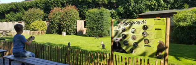 Tilburg met kinderen? Ontdek de stoere Spoorzone en dierenpark De Oliemeulen